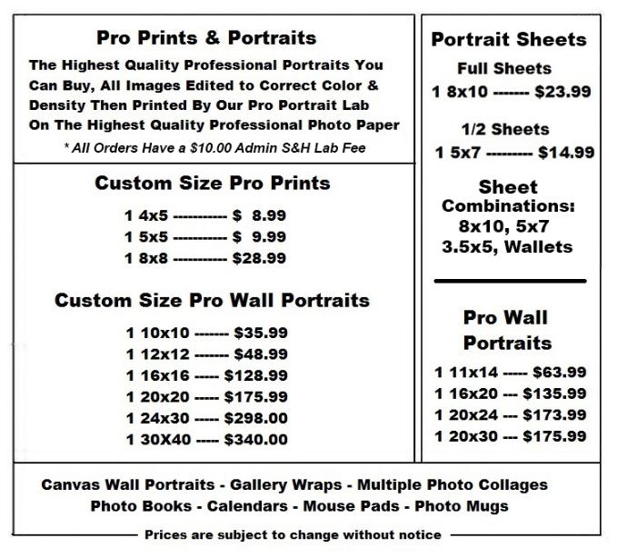 Portrait Pricing: Photography Prices_Other Dresses_dressesss